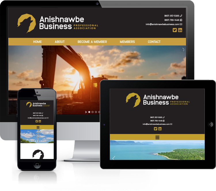 Website for Anishnawbe Business Professional Association